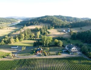 Beacon Hill Winery w/ Marion Arces Farm